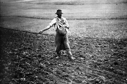 Il faut semer avant de récolter
