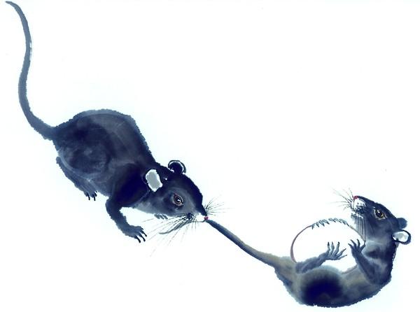 Le Rat