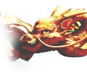 Les affinités amoureuses du Dragon