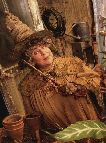 Druides, Sorcières et Chamans ont de tout temps utilisé les plantes dans la Magie