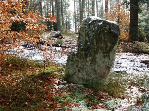 Une pierre remarquable dans la forêt peut être un lieu de Sabbat