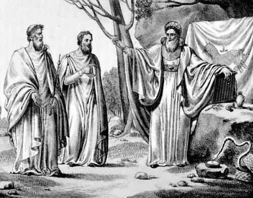 L'enseignement druidique pouvait prendre jusqu'à 20 ans