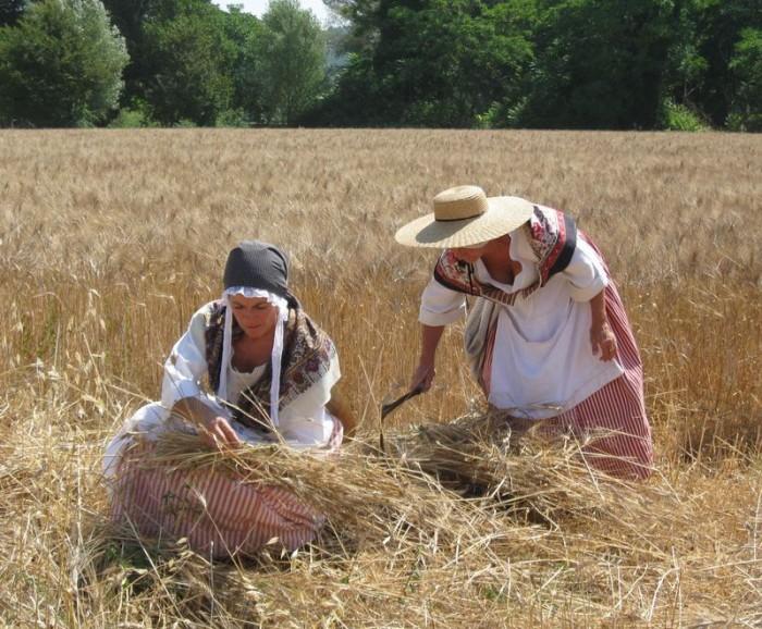 Lugnasad était la fête des moissons dans le monde paysan