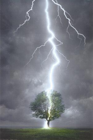 Les forces de la nature décident seules de foudroyer un arbre